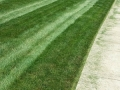 mowing-after