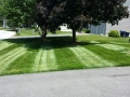mowing-summer-4-1