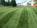 mowing-summer