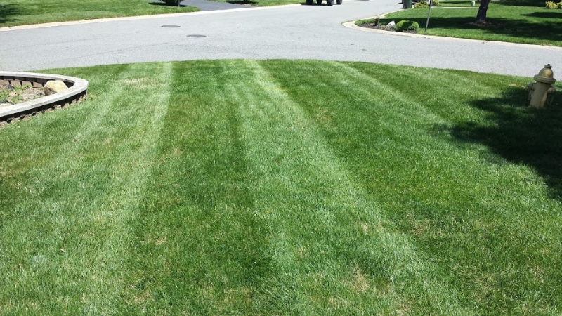 mowing-2014-34